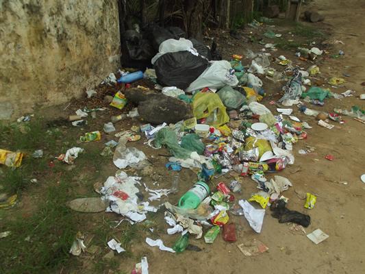 Moradores reclamam que recolhimento do lixo não está sendo feito. (foto: cortesia)