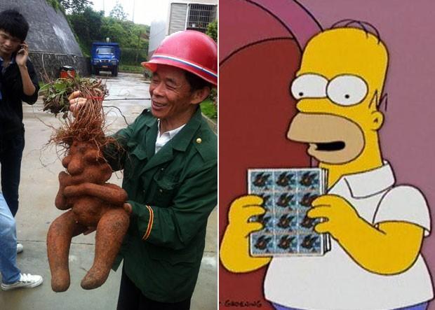 Raiz foii apelidada de 'Homer Simpson' por sua semelhança com o personagem animado (Foto: Imaginechina)