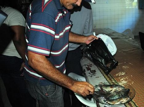 Pescador mostra peixe contaminado