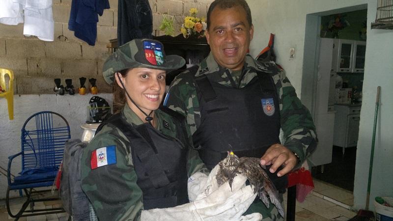 Policiais encaminharam o animal para a sede do IBAMA.