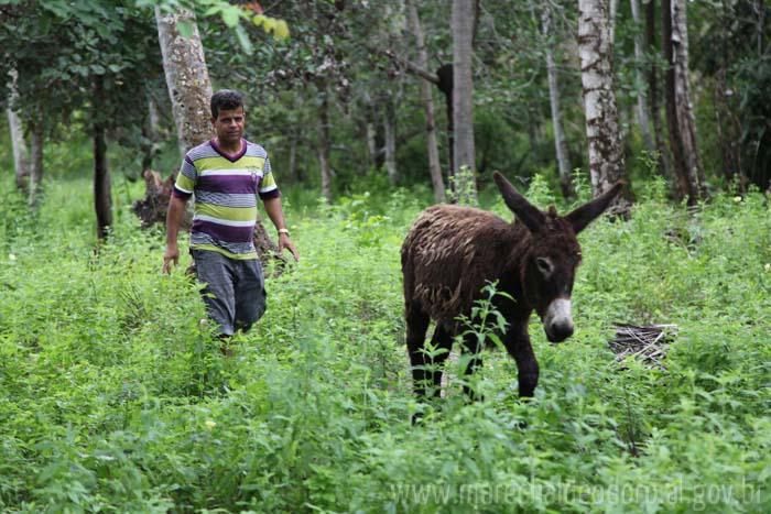 Queijinho é o responsável pela apreensão dos animais.