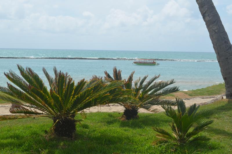 Cenário paradisíaco faz da Praia do Francês uma das mais belas do Brasil.