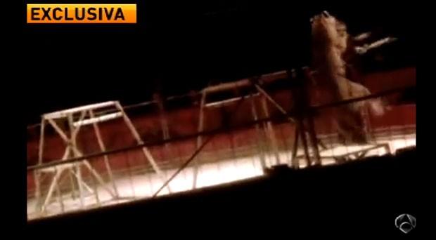 Tigre ataca domador em circo na Espanha (Foto: Reprodução/ YouTube/ IbericoEspañol)