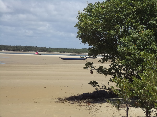 Praia das Conchas na Barra de São Miguel - AL. (foto: arquivo MN)