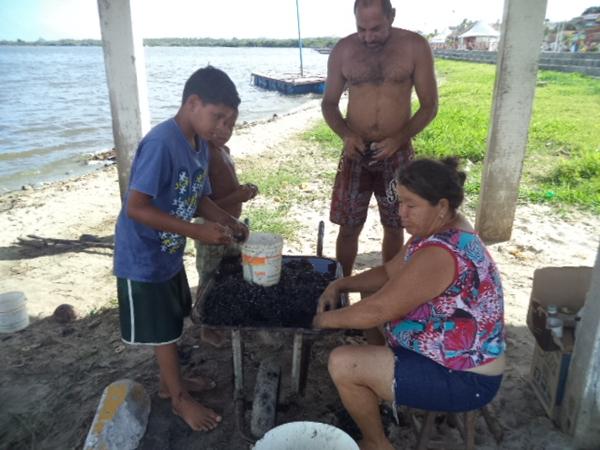 Pescadores comemoram aparecimento do sururu.