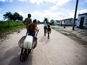 Portaria libera recursos para compra de ração animal e carros-pipa. (Foto: Jonathan Lins/G